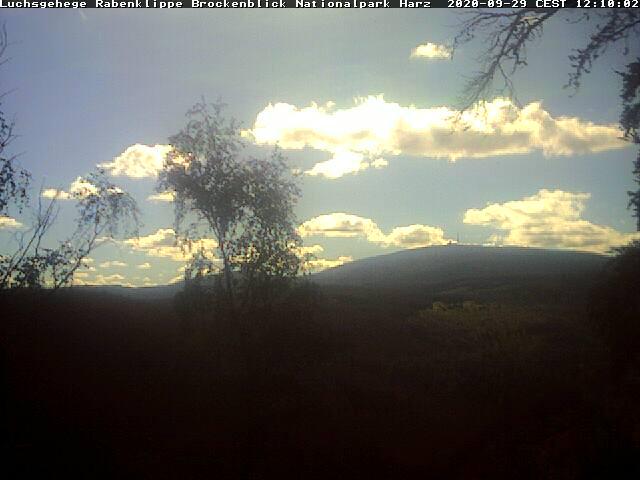 Aktuelles Bild der Live-Webcam von der Rabenklippe